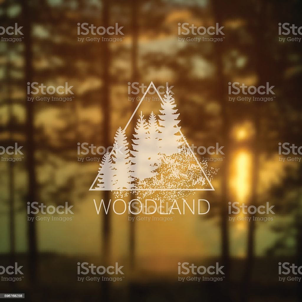 logo with forest trees vector art illustration