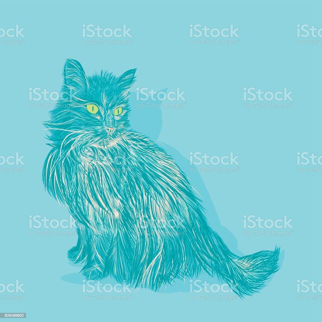Long Hair Domestic Cat on Blue Background vector art illustration