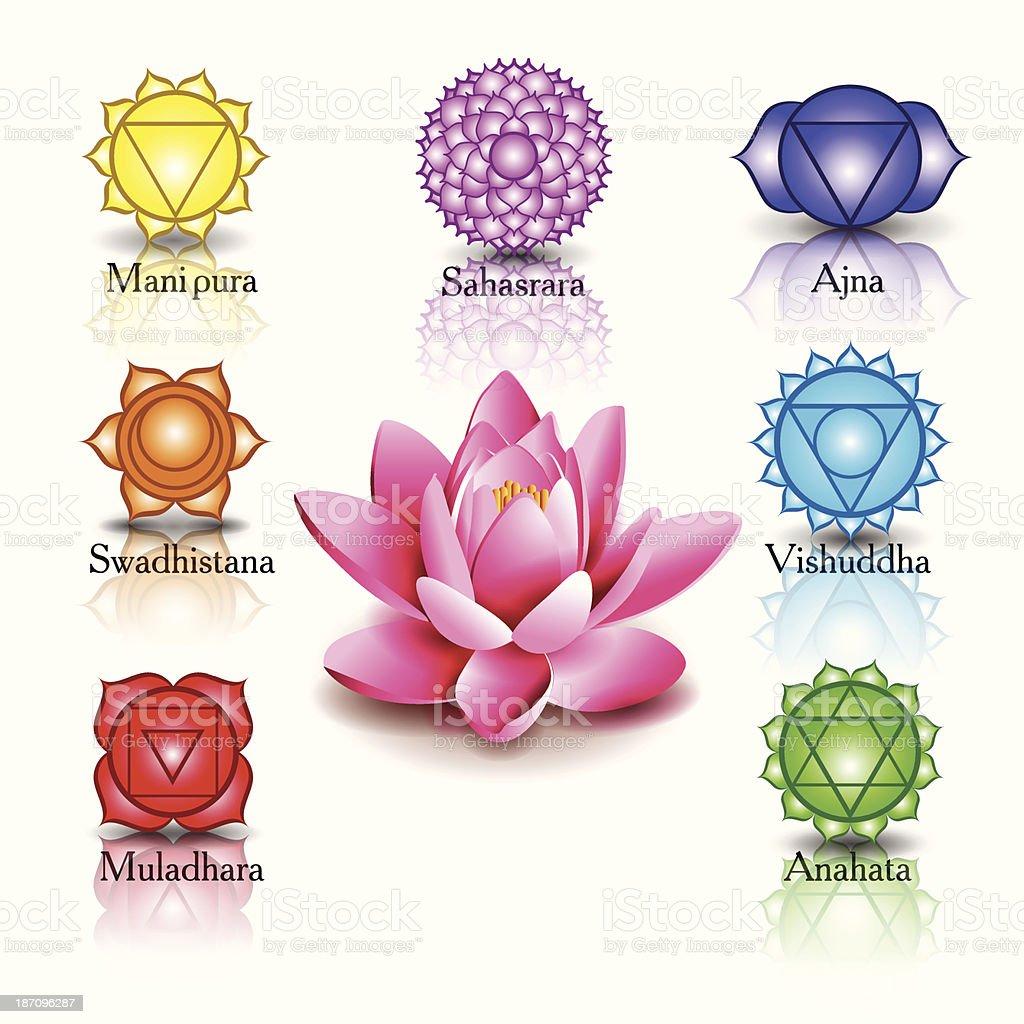 lotus and Seven chakras vector art illustration