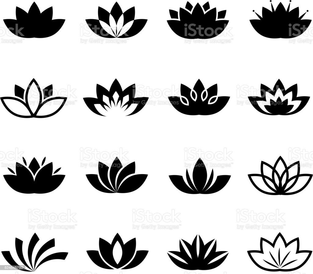 Lotus Flower Line Drawing Vector Free Download : Lotus flower vector icons set stock art