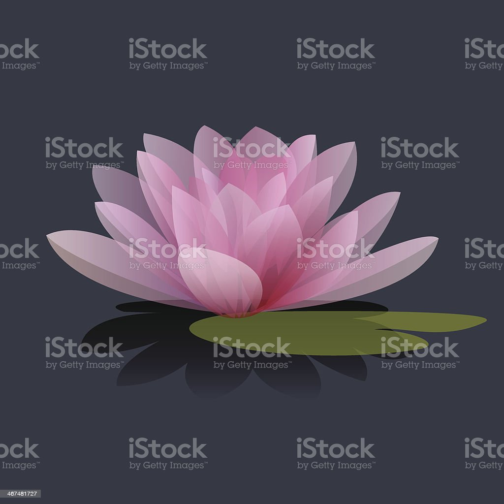 Lotus flower vector illustration vector art illustration