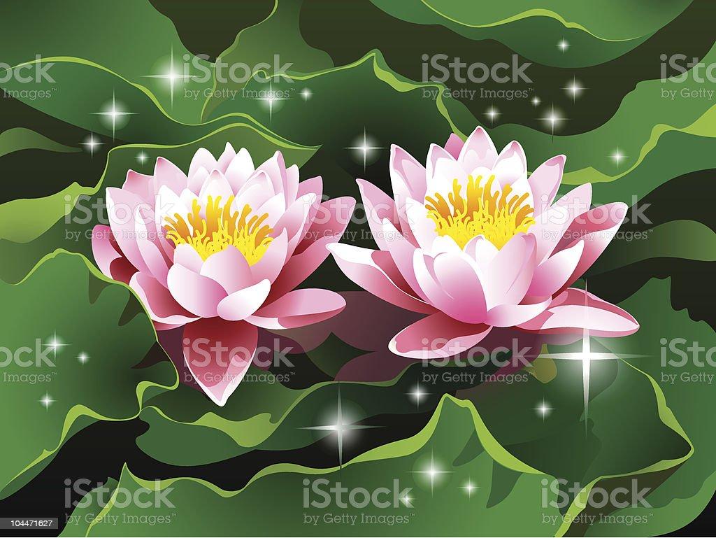 Lotus flowers in a pond stock vector art 104471627 istock lotus flowers in a pond royalty free stock vector art izmirmasajfo Gallery