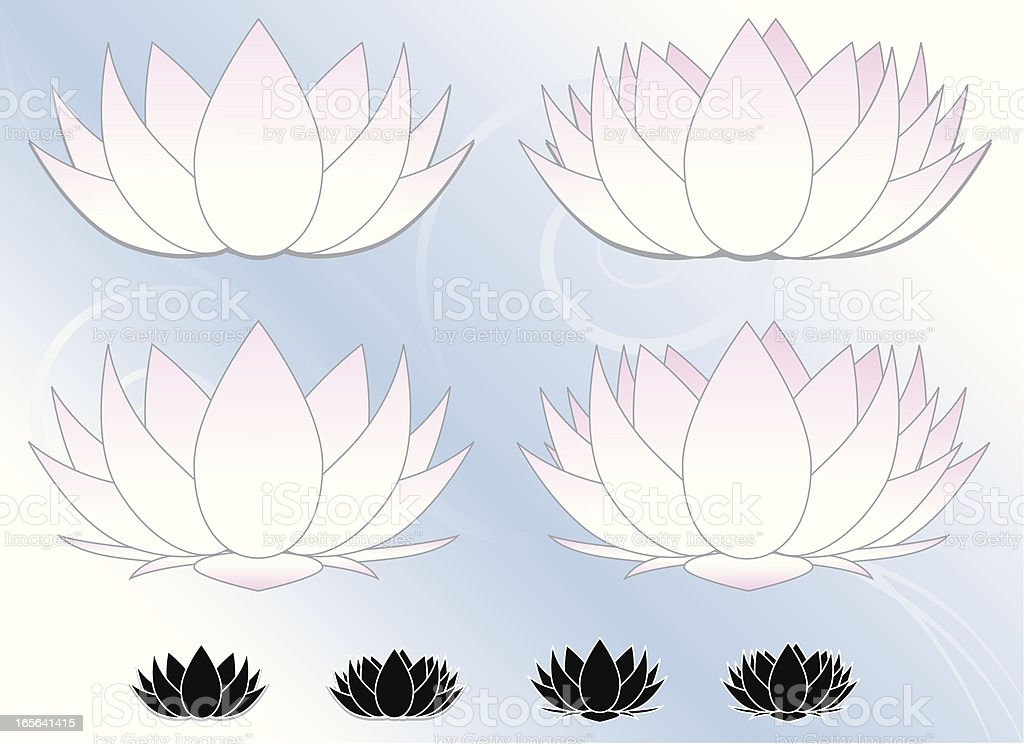 Lotus Flowers, Water Lilies Set (Pink, White) with Icons, Background royalty-free stock vector art