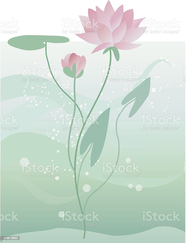 Lotus royalty-free stock vector art