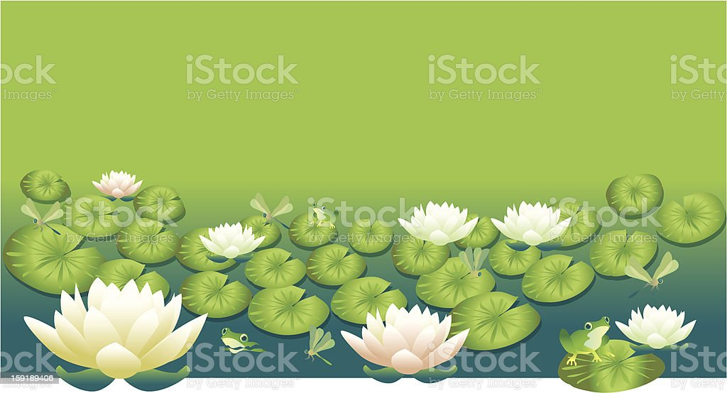 lotus water lily vector art illustration