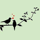 Love birds on a tree branch