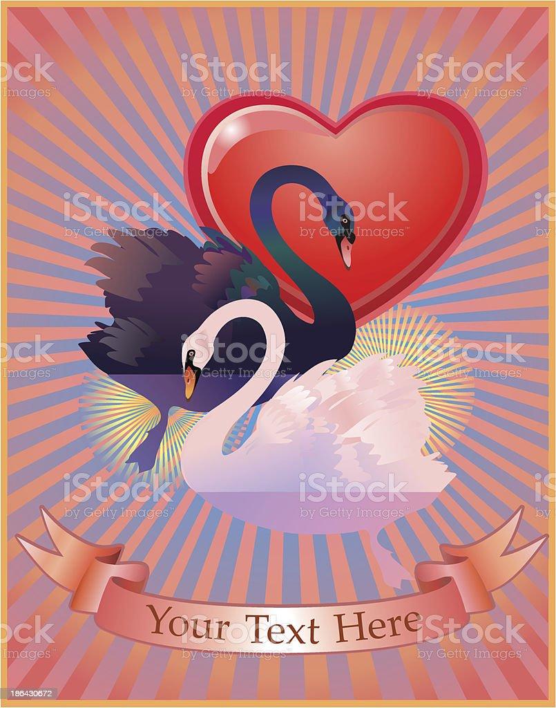 Love of black and white swan vector art illustration
