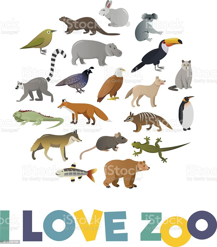 I love ZOO. Vector poster with animals images vector art illustration