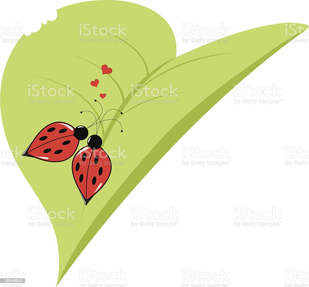 Lover Ladybugs royalty-free stock vector art