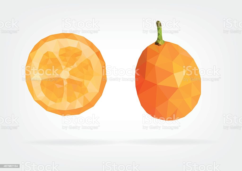 Low Poly Kumquat fruit vector art illustration