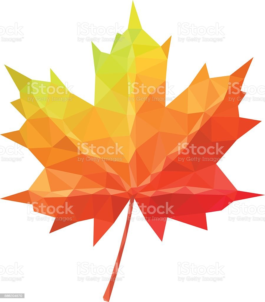 Low poly vector maple leaf geometric pattern vector art illustration
