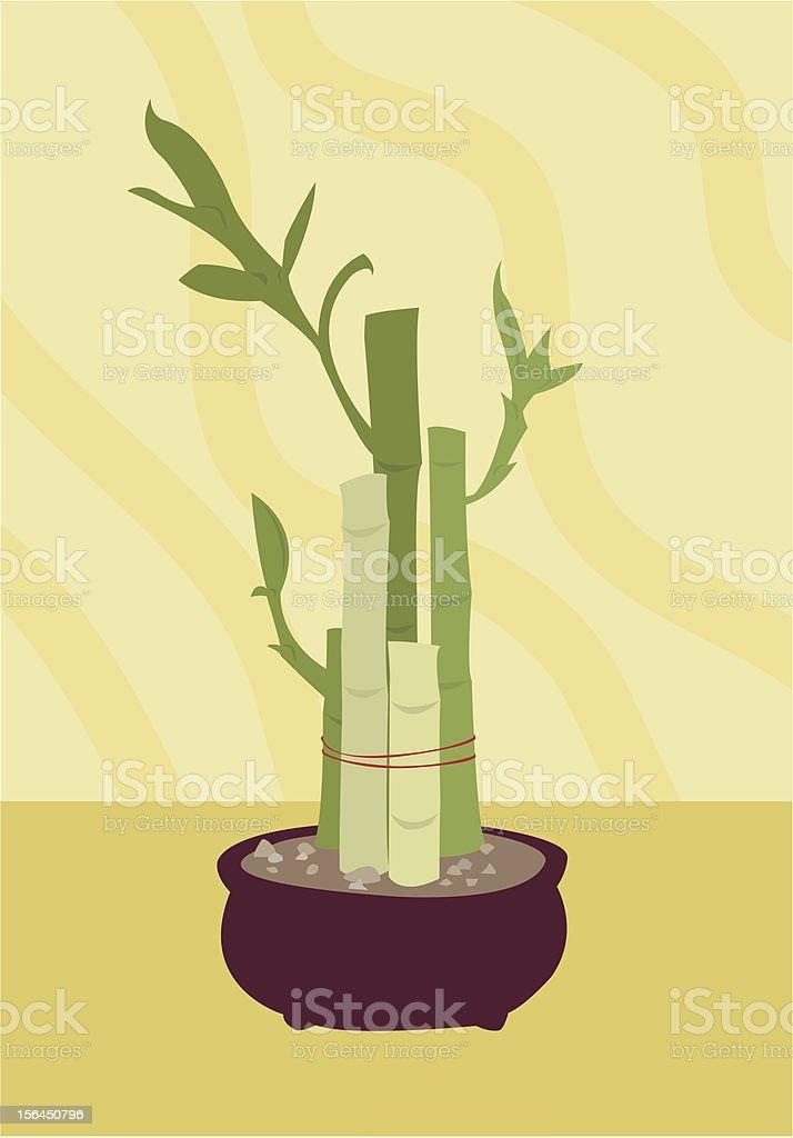 Lucky Bamboo royalty-free stock vector art