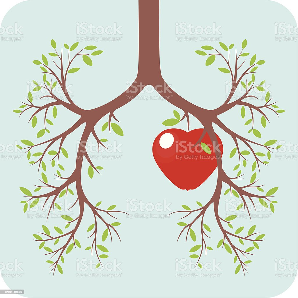 Lung and heart concept royalty-free stock vector art