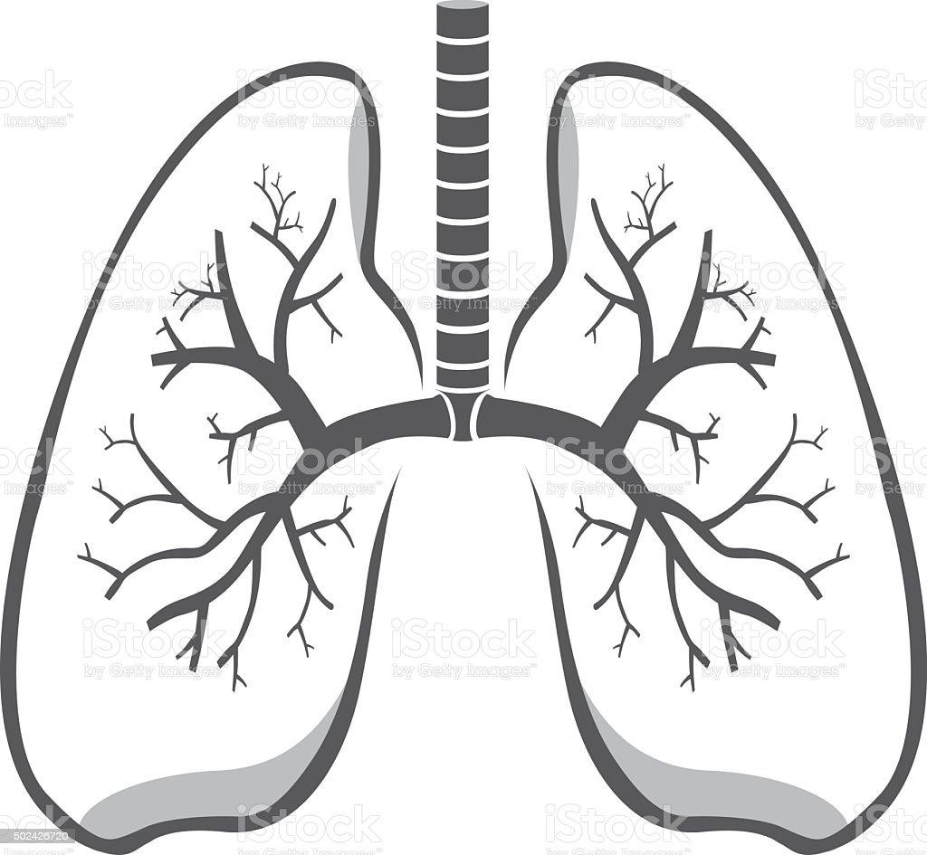 Lung symbol vector art illustration