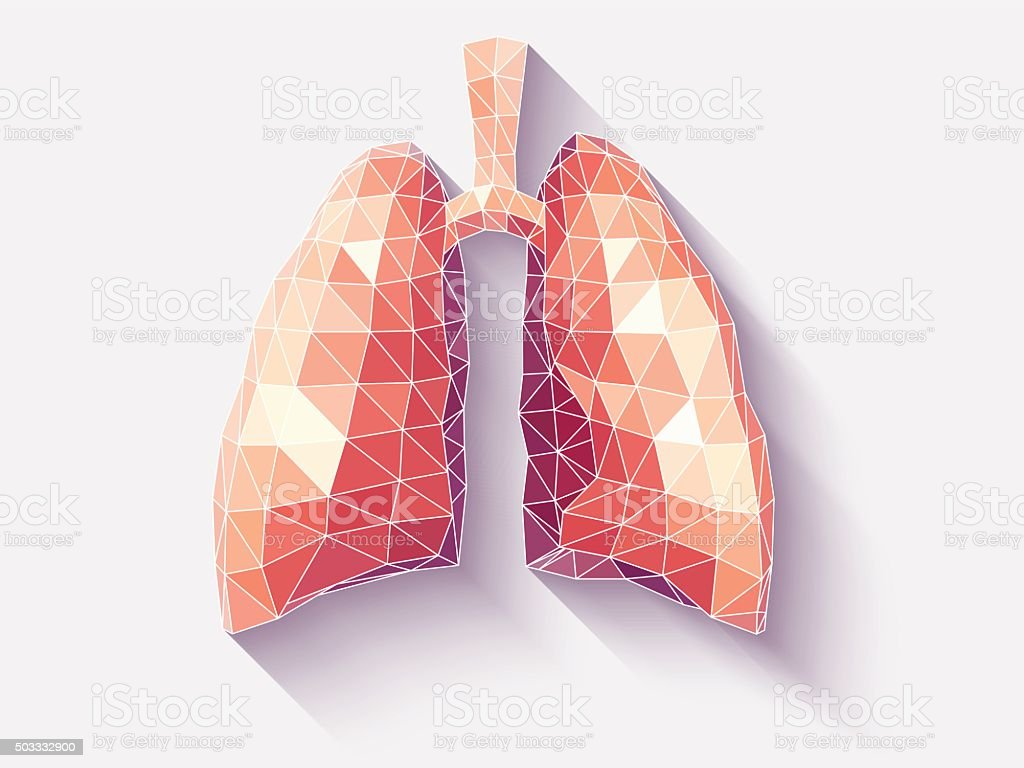 Lungs poly faceted vector art illustration
