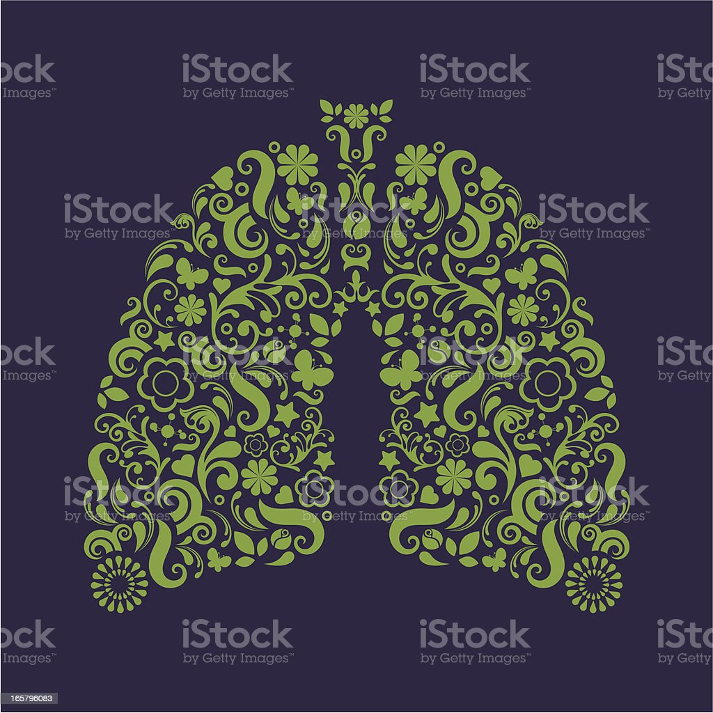 Lungs. royalty-free stock vector art