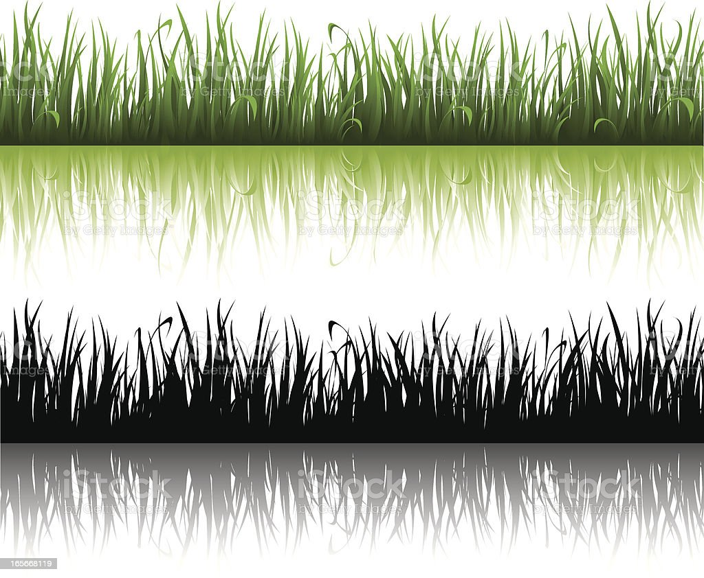 Lush green grass and its black silhouette vector art illustration