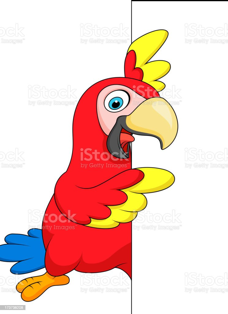 Macaw bird cartoon with blank sign royalty-free stock vector art