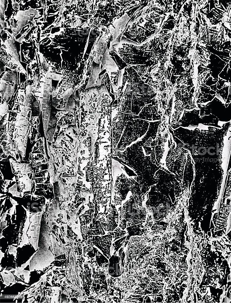 Macro Birch Bark Textured Background in Infrared Style vector art illustration