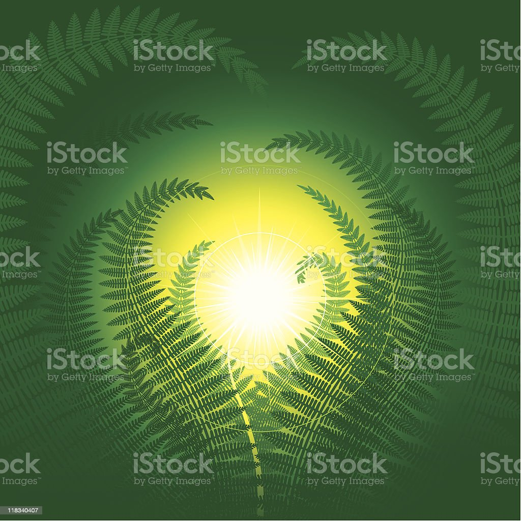 Magic fern royalty-free stock vector art