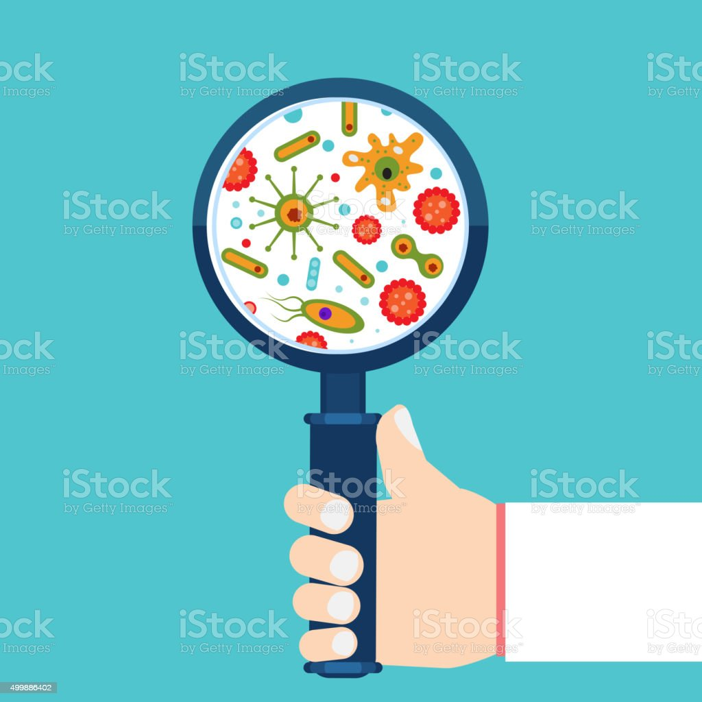 Magnifier and bacteria vector art illustration