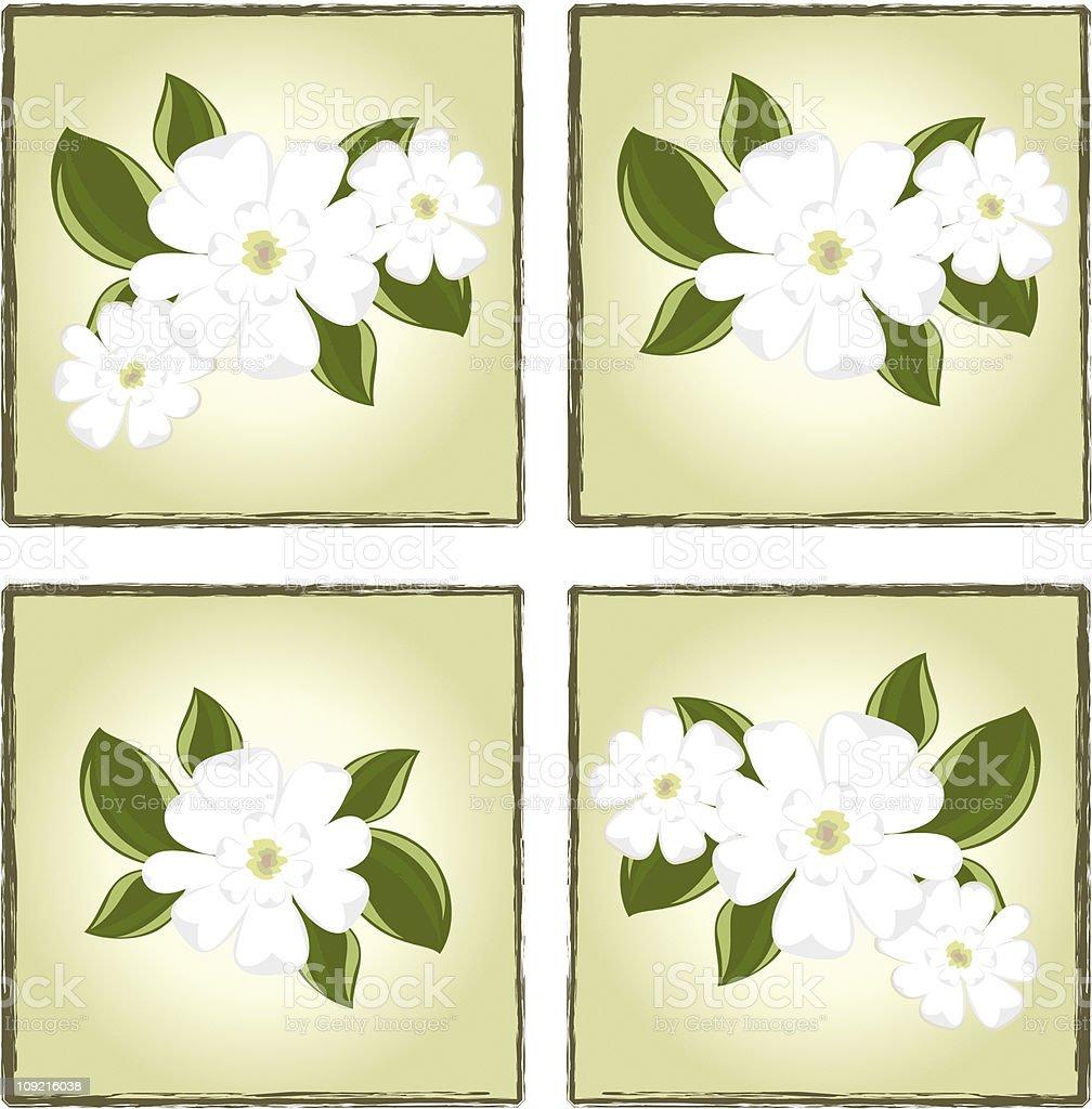 Magnolia Boxes vector art illustration