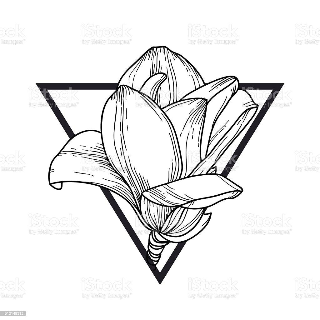 Magnolia in triangle vector art illustration