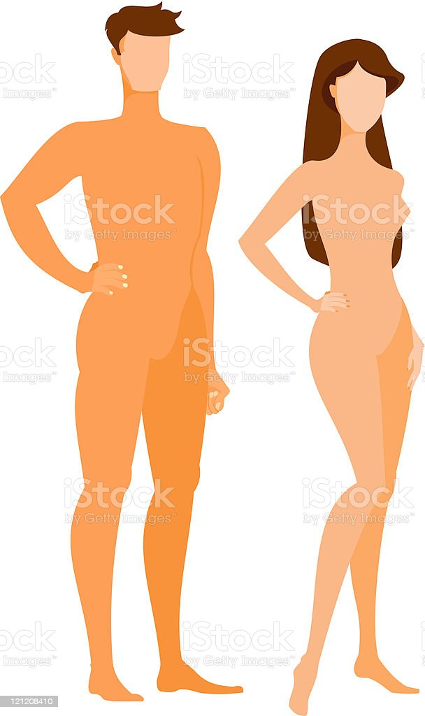 Male and female dummies royalty-free stock vector art