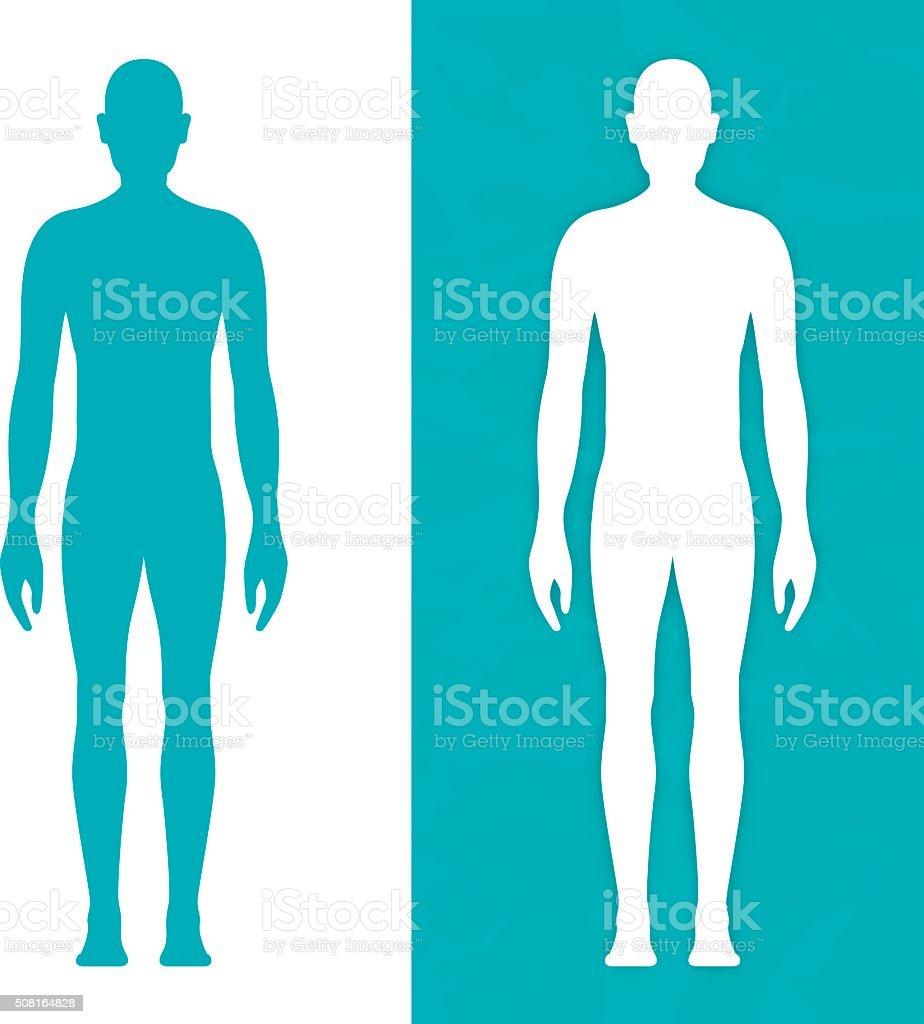 Male Body Form vector art illustration