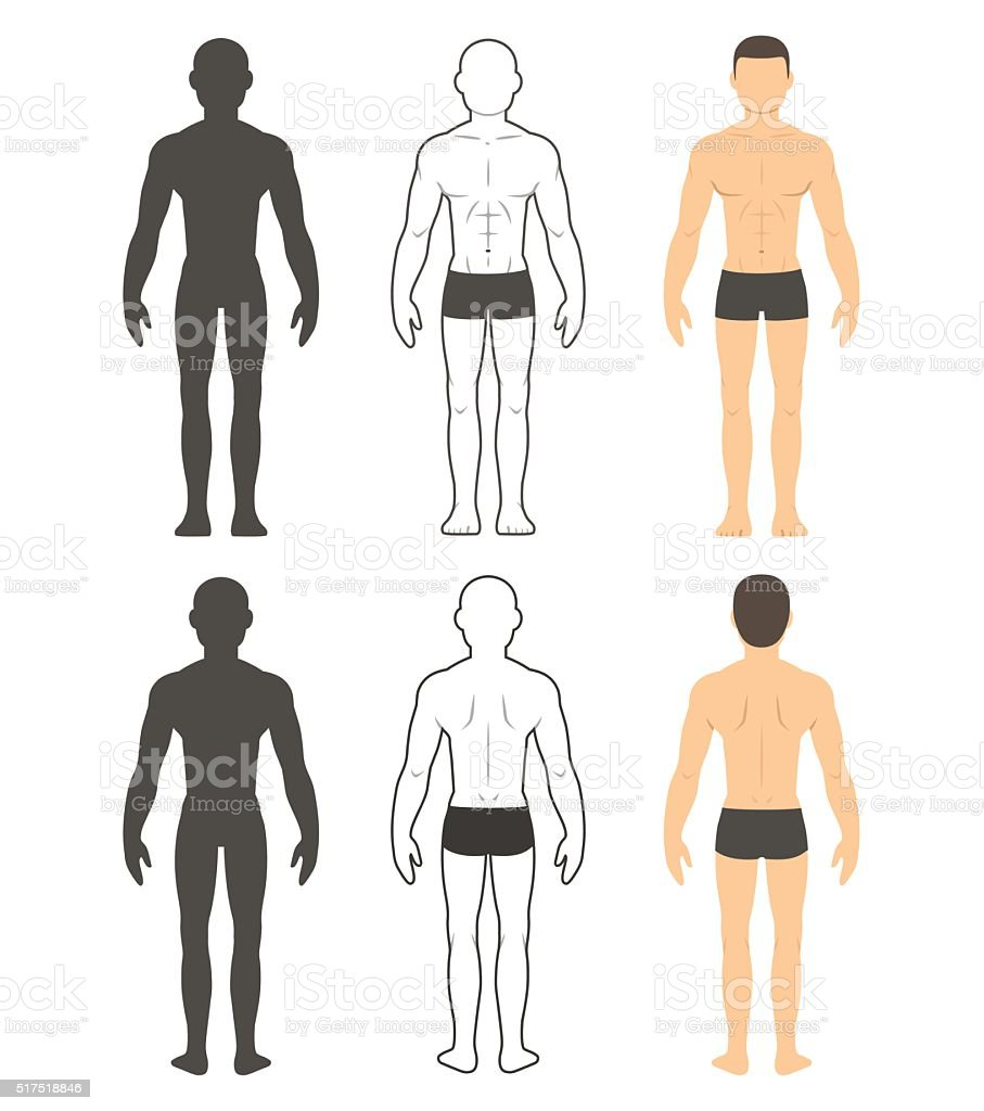 Male body illustration vector art illustration