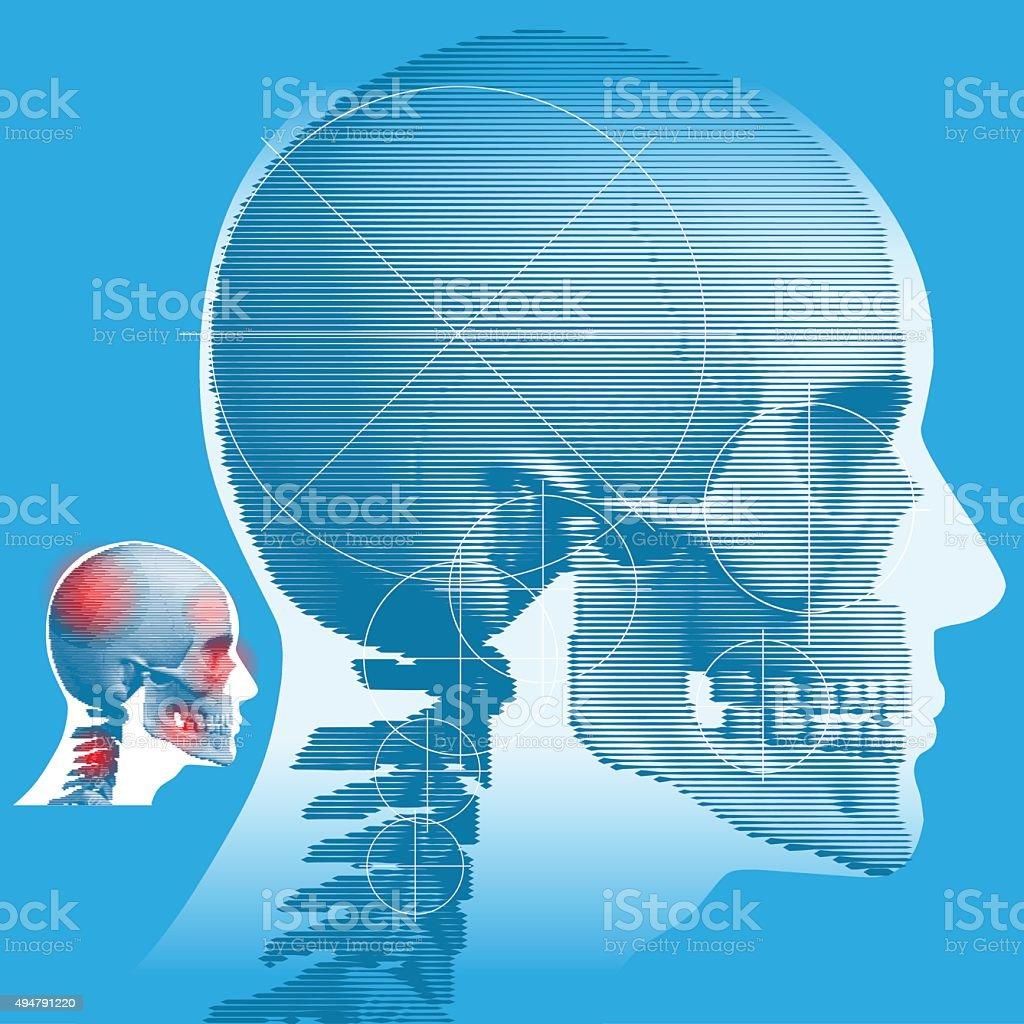 Male Head and Skull vector art illustration