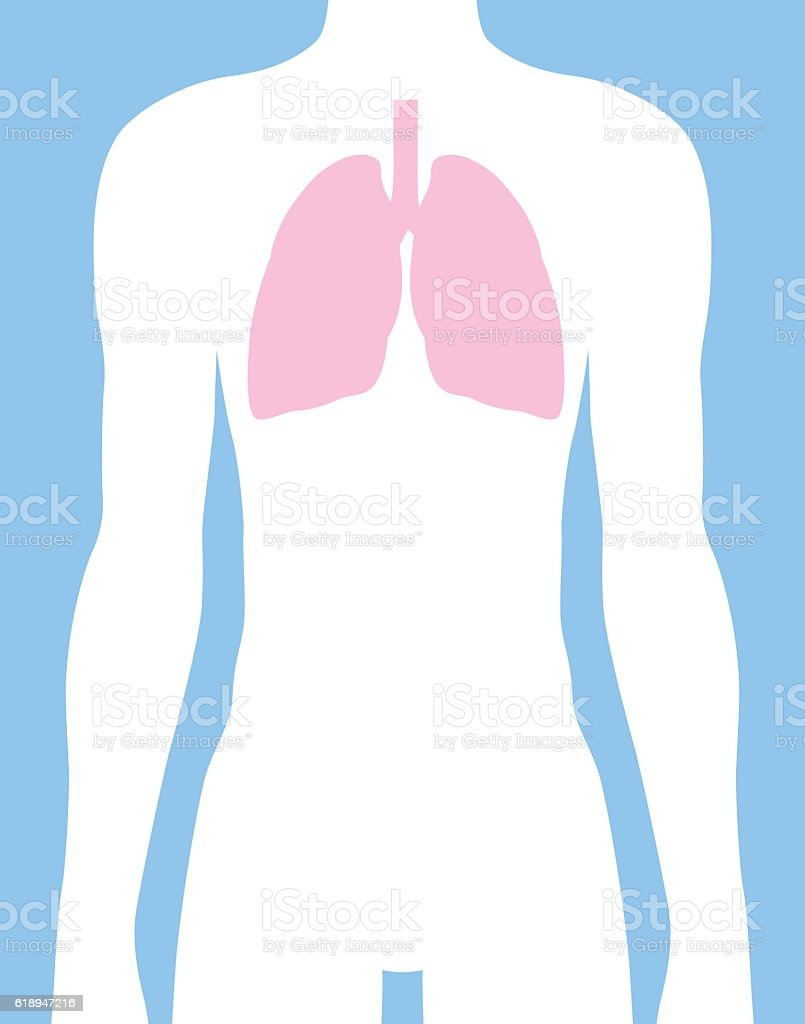 Male Lungs Body icon vector art illustration