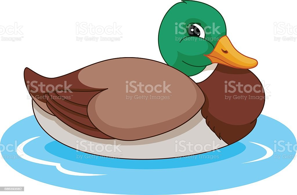 clip art of a wild duck clip art vector images illustrations istock rh istockphoto com