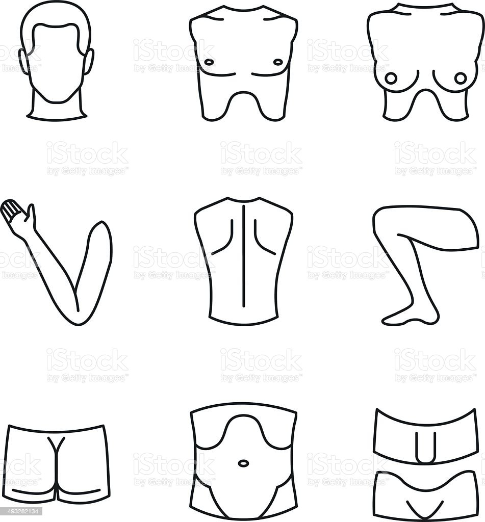Man and woman body parts as anatomical guide vector art illustration