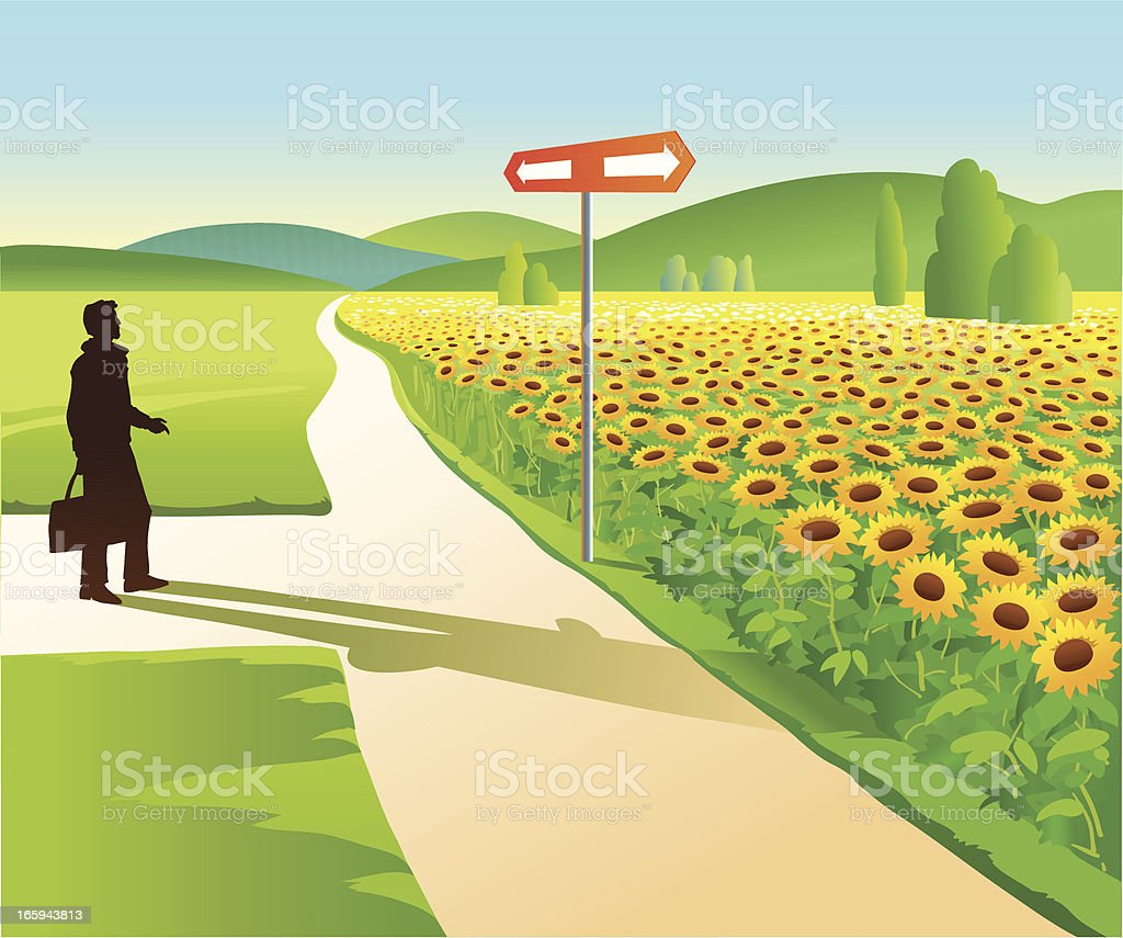 Man at the Sunflowers Field Crossroad royalty-free stock vector art
