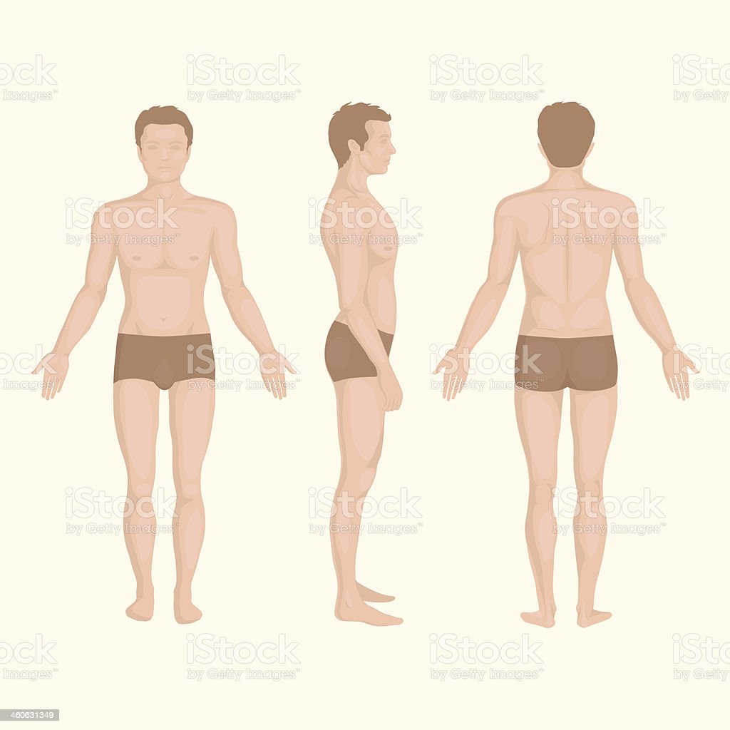 man body, front, back and side  human pose vector art illustration