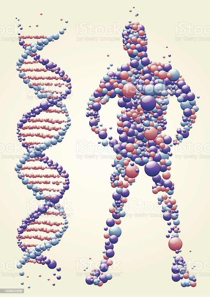 DNA man vector art illustration
