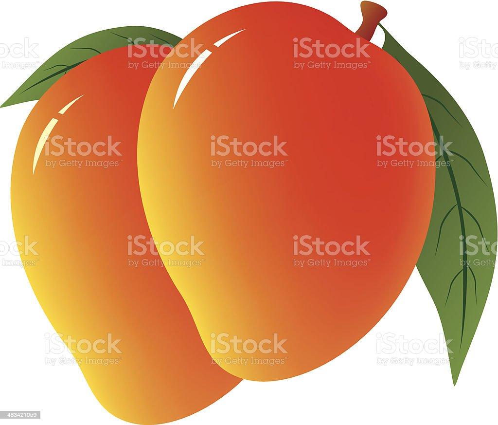 Green Mango Clip Art, Vector Images & Illustrations - iStock