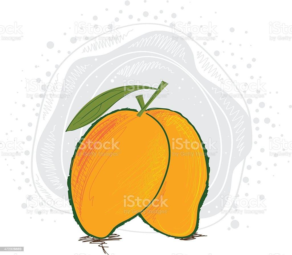 Mango vector art illustration