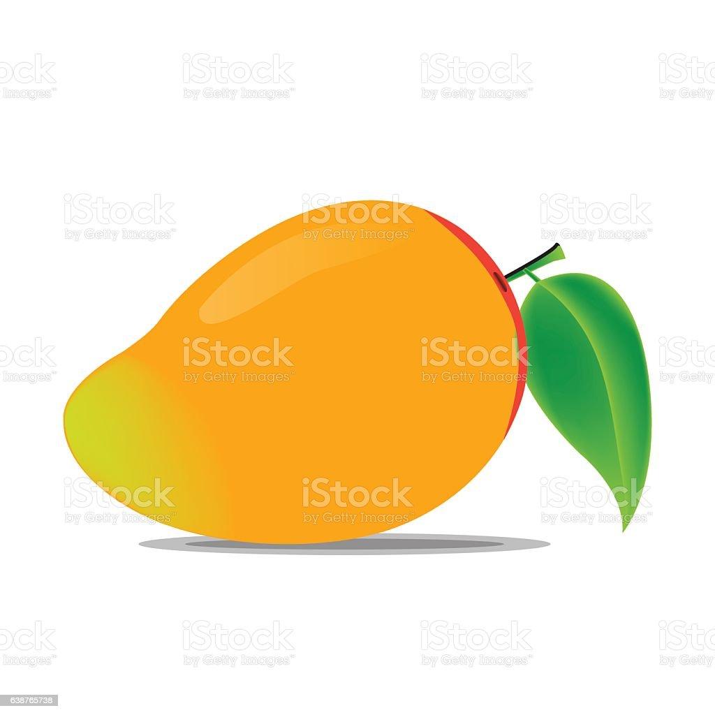 Mango Vector vector art illustration