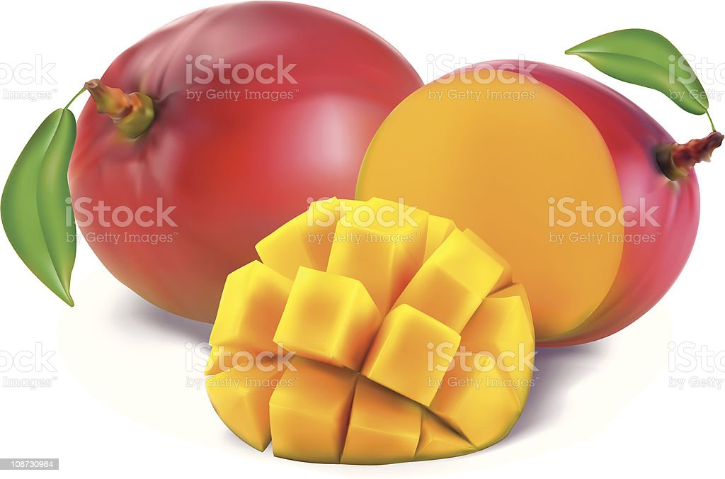 Mango with section vector art illustration