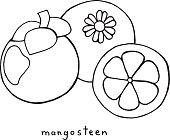 tropical mangosteen coloring page graphic vector black and white art for coloring books for adults