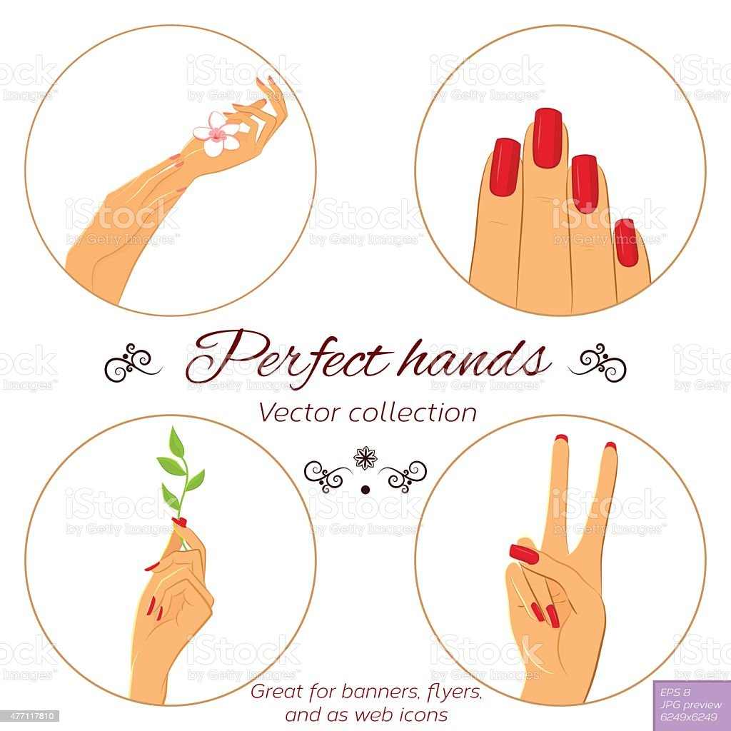 Manicure and skincare concept. Set of hands vector art illustration