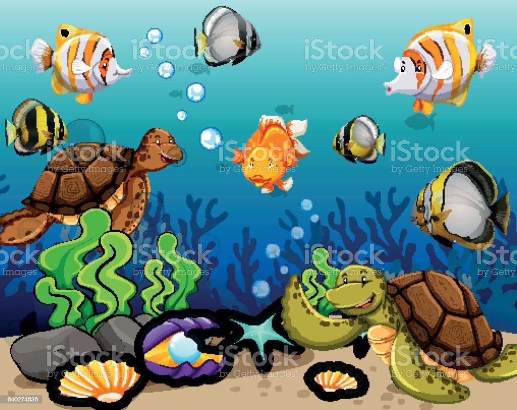 Many sea animals swimming underwater illustration