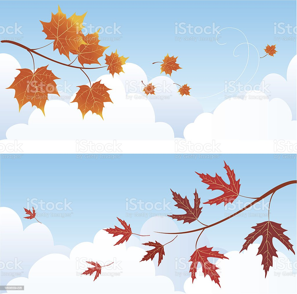 Maple autumn branches royalty-free stock vector art