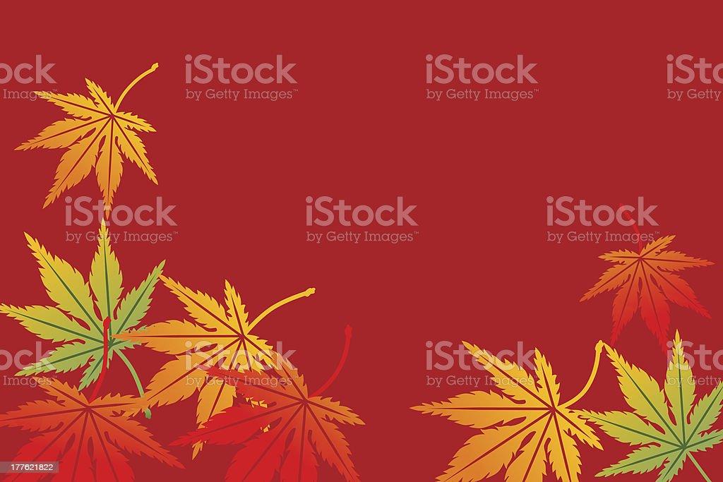 Maple background,Horizontal vector art illustration