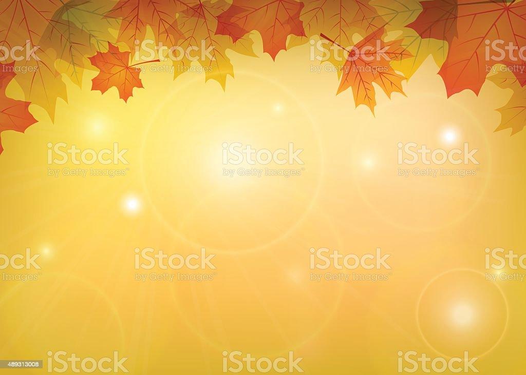 maple leaves frame vector art illustration