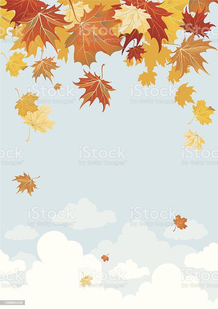 Maple leaves vector art illustration