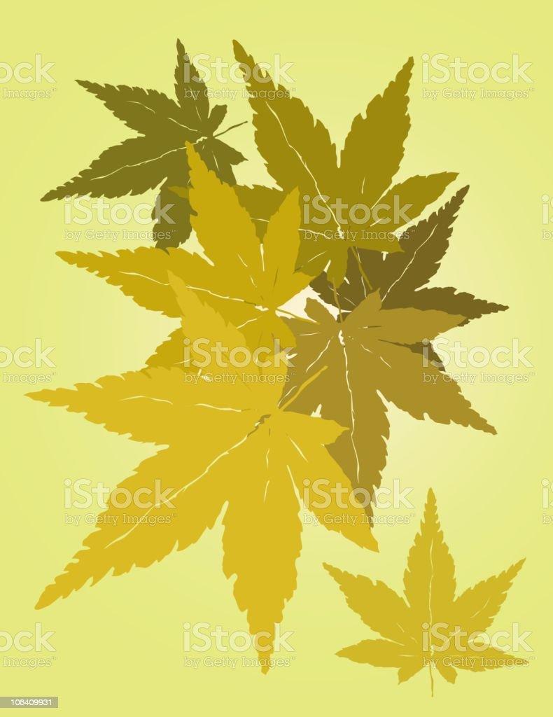 Maple Leaves royalty-free stock vector art