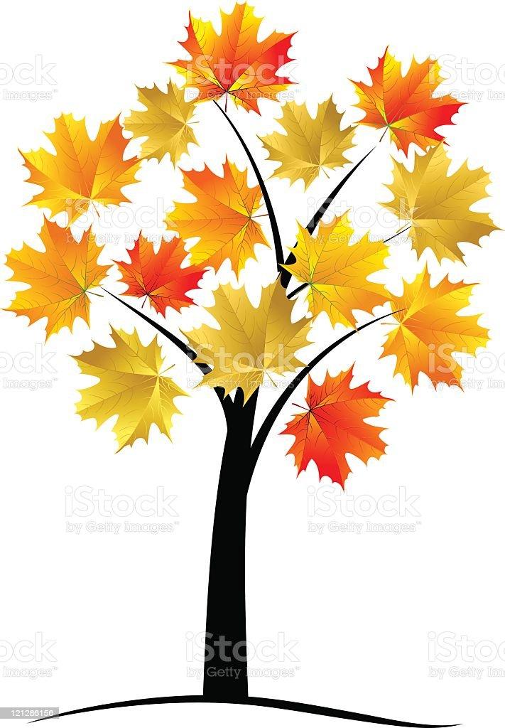 Maple tree, autumn leaf royalty-free stock vector art